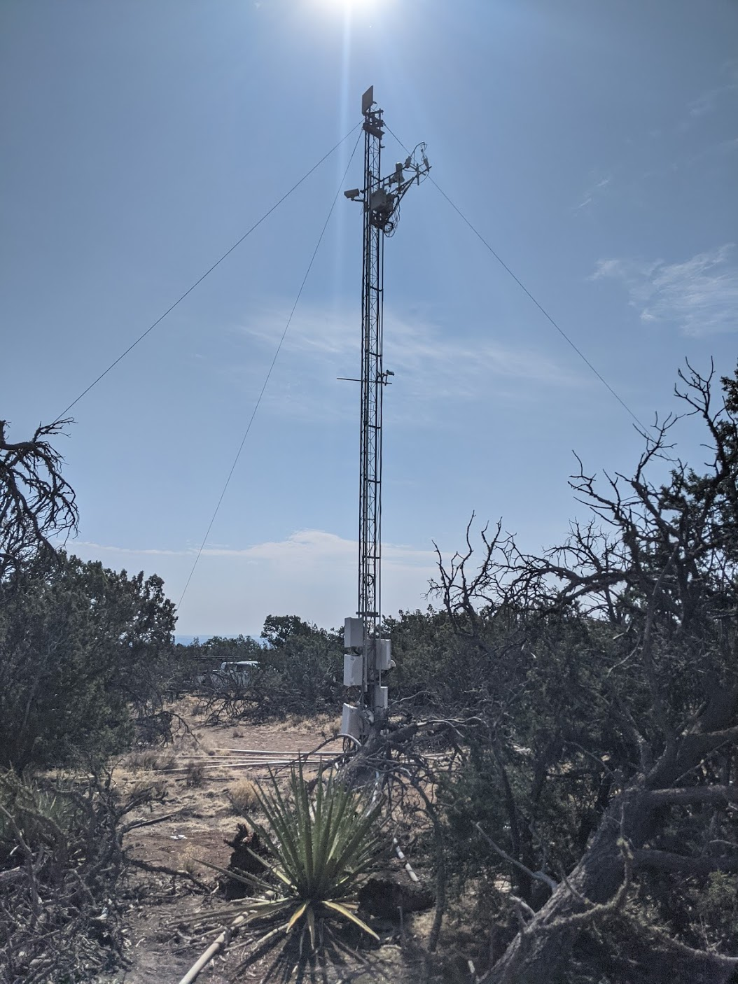 A picture of a flux tower in a pinyon-juniper woodland